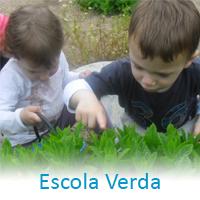 escola_verda_link